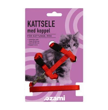 Kattungesele med koppel rött eller blått